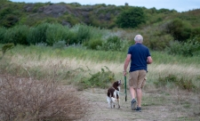Dog walking on Longis reserve